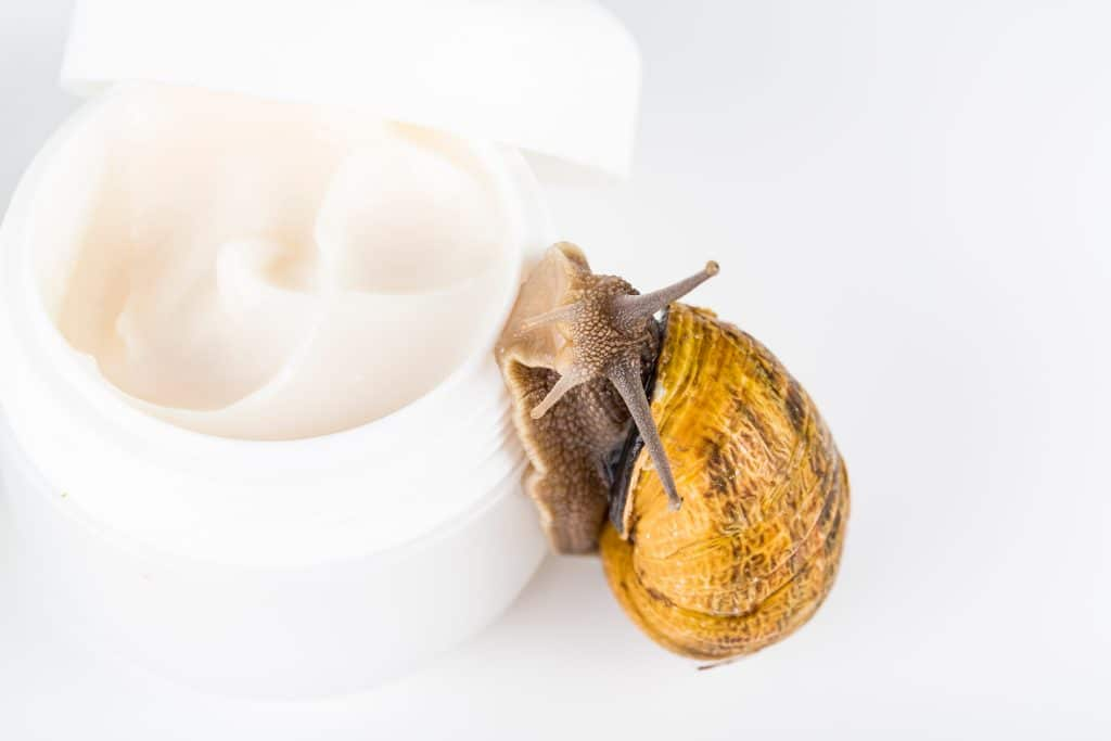 Choisir une crème à la bave d'escargot qui correspond à votre type de peau