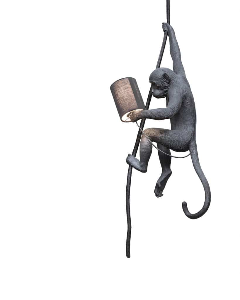 Une lampe singe