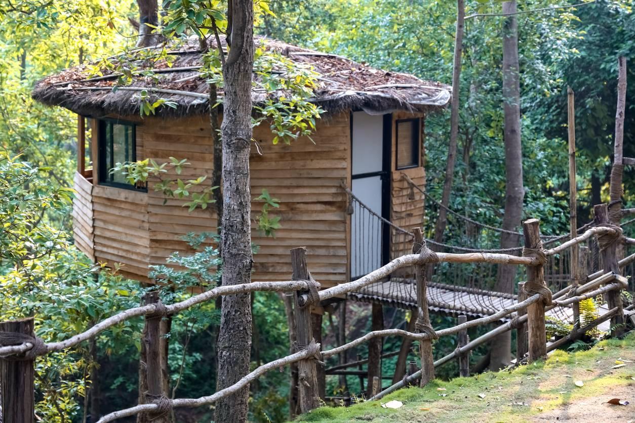 séjour cabane dans les arbres