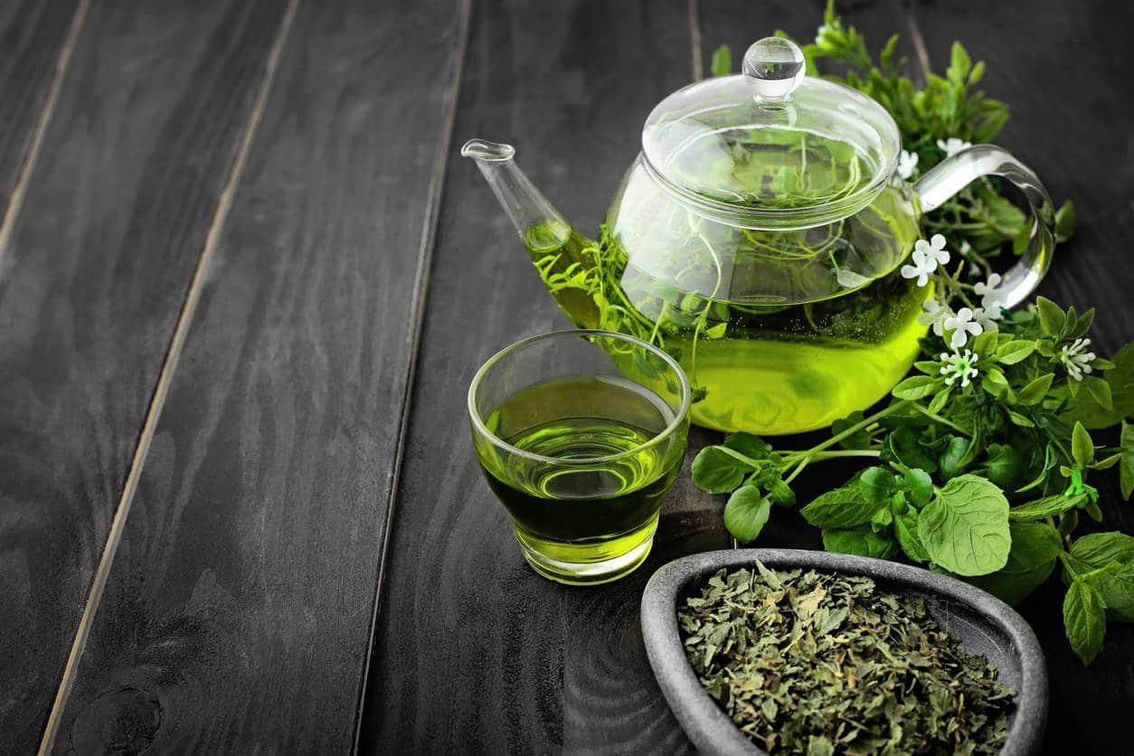 actif minceur ingrédient naturel EGCG thé vert